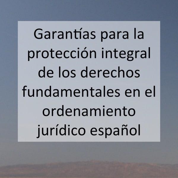 Garantías para la protección integral de los derechos fundamentales en el ordenamiento jurídico español
